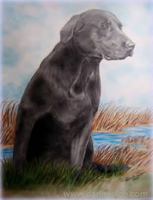 Hunting Dog in Outdoor Scene Artwork Drawing